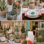 décoration de table avec cactus et plantes sous verre