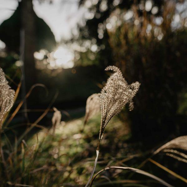 photographe-julien-marchione-deco-marylene-rene-2